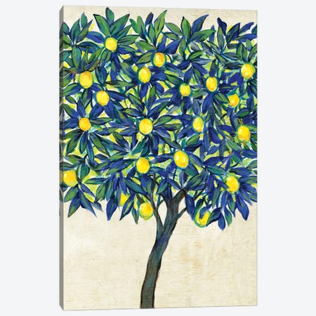 Lemon Tree Composition II Canvas Print #TOT694} by Tim OToole Canvas Art Print