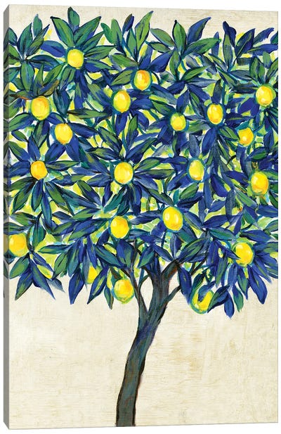 Lemon Tree Composition II Canvas Art Print
