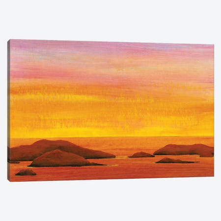 Ocean Glow I Canvas Print #TOT695} by Tim OToole Art Print
