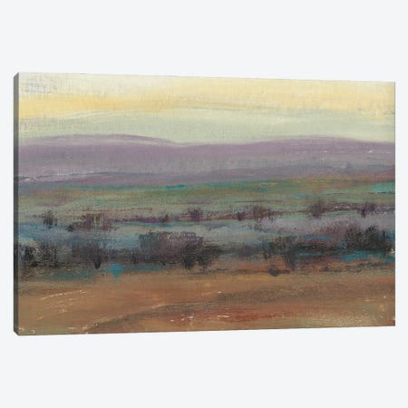 Fast Fading Light I Canvas Print #TOT699} by Tim OToole Canvas Art