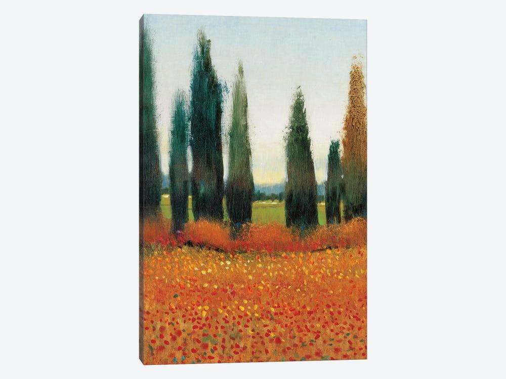 Cypress Trees I by Tim OToole 1-piece Canvas Art Print