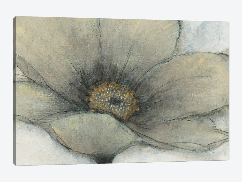 Single Cream Bloom II by Tim OToole 1-piece Canvas Artwork