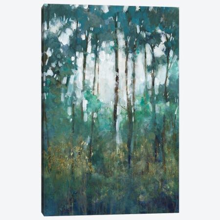 Glow in the Forest II Canvas Print #TOT708} by Tim OToole Canvas Art