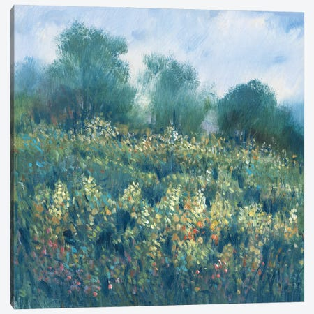 Meadow Wildflowers I Canvas Print #TOT711} by Tim OToole Canvas Art Print