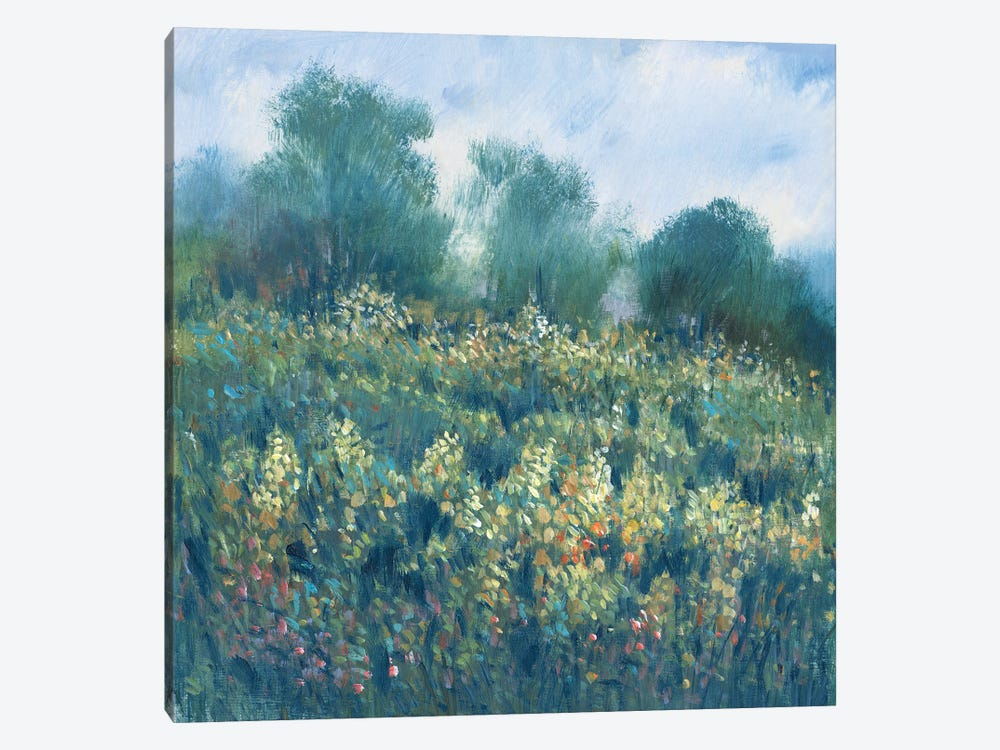 Meadow Wildflowers I by Tim OToole 1-piece Canvas Artwork