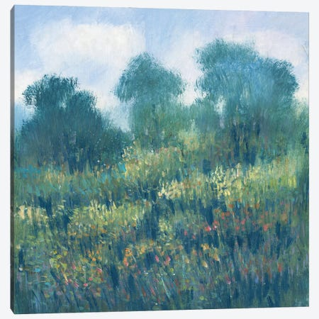Meadow Wildflowers II Canvas Print #TOT712} by Tim OToole Canvas Print