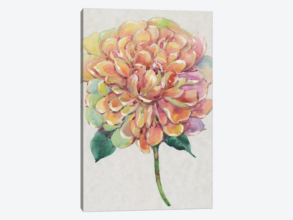 Multicolor Floral I 1-piece Canvas Wall Art