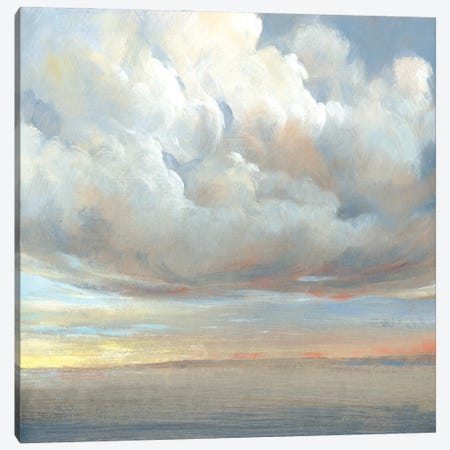 Passing Storm I Canvas Print #TOT717} by Tim OToole Canvas Wall Art