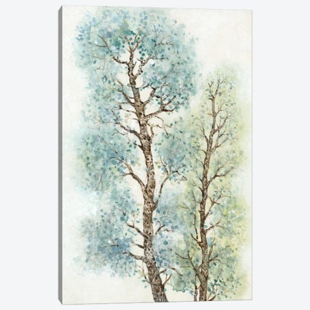 Tranquil Tree Tops I Canvas Print #TOT71} by Tim O'Toole Canvas Art