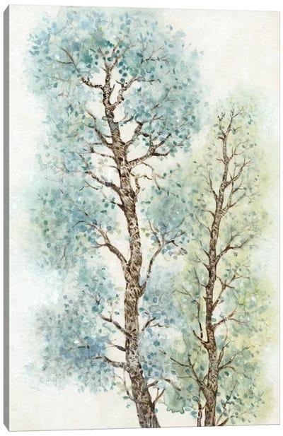 Tranquil Tree Tops I Canvas Print #TOT71
