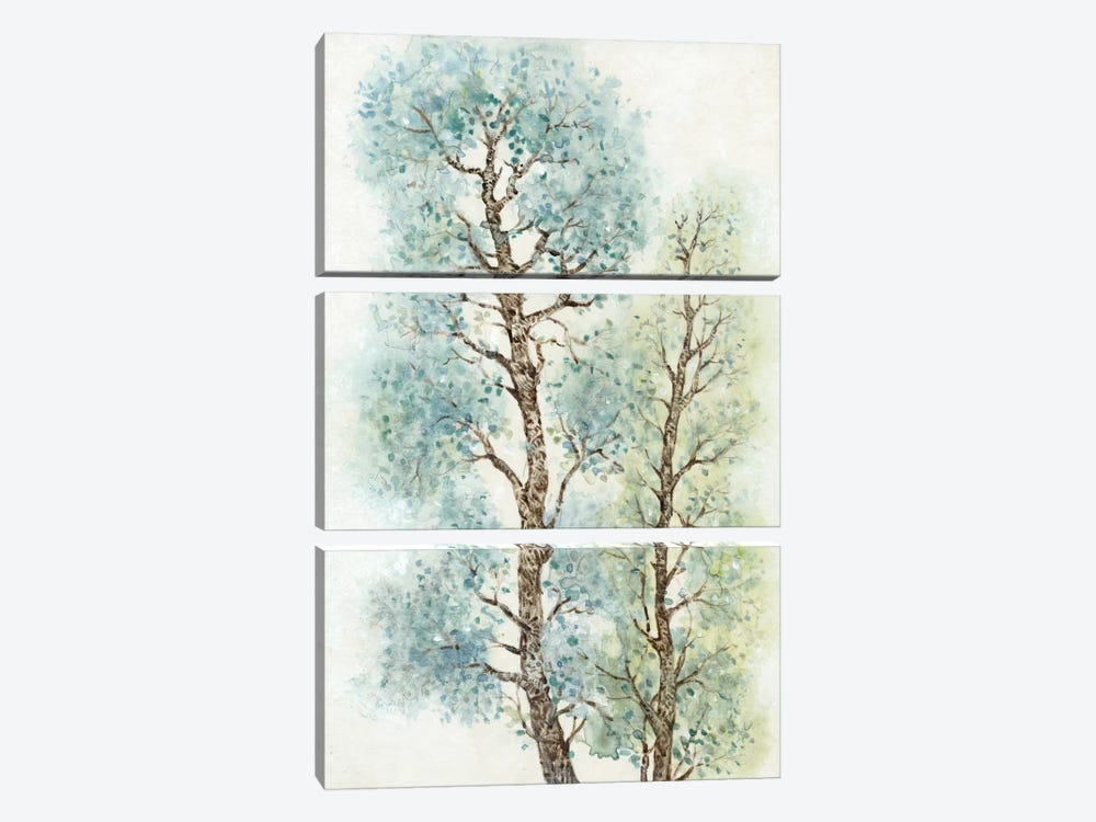 Tranquil Tree Tops I by Tim OToole 3-piece Art Print