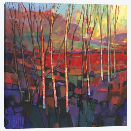 Patchwork Trees II Canvas Print #TOT720} by Tim OToole Canvas Art