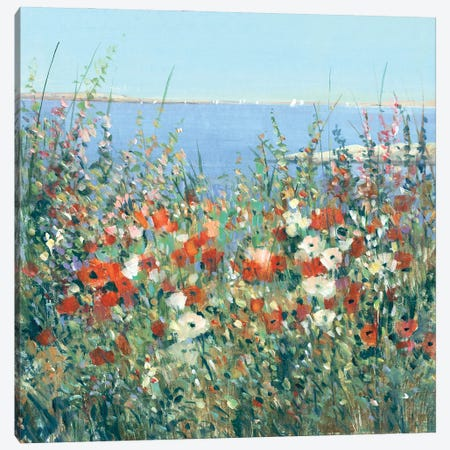 Seaside Garden I Canvas Print #TOT721} by Tim OToole Canvas Art