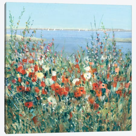 Seaside Garden II Canvas Print #TOT722} by Tim OToole Canvas Art