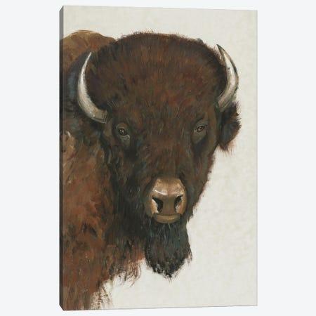 Western Portrait II Canvas Print #TOT724} by Tim OToole Canvas Print