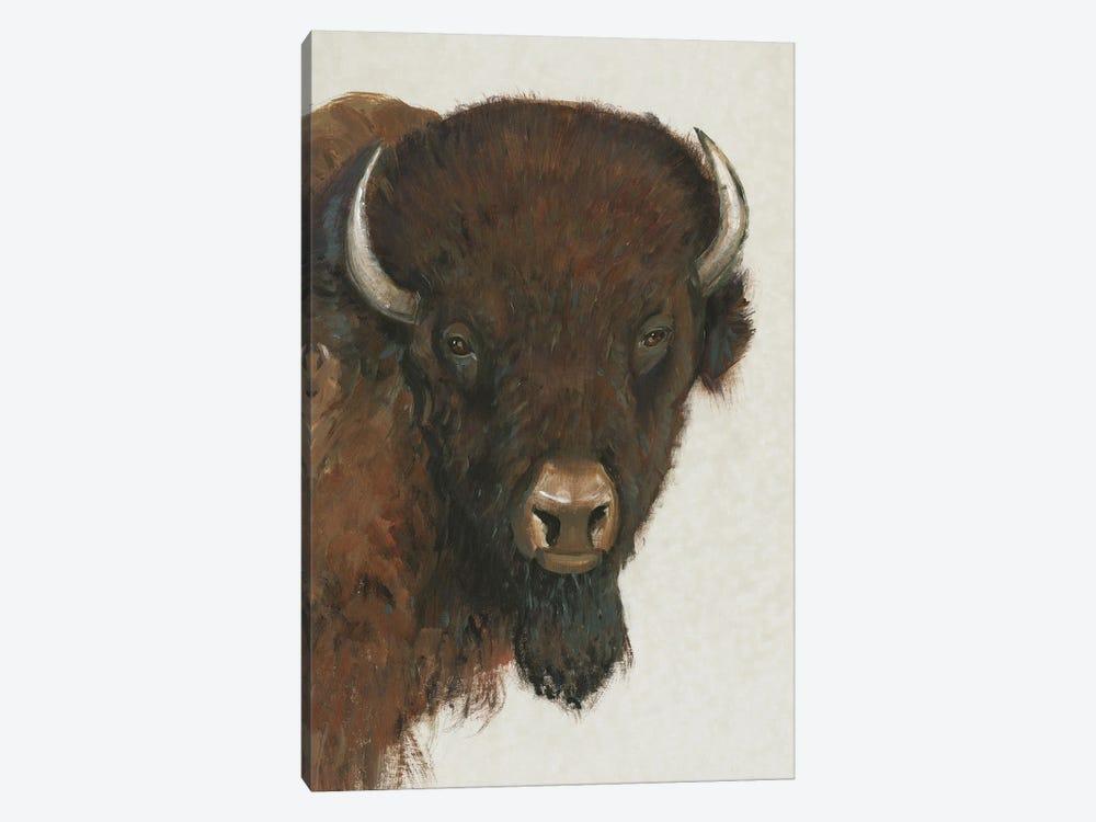 Western Portrait II by Tim OToole 1-piece Canvas Art