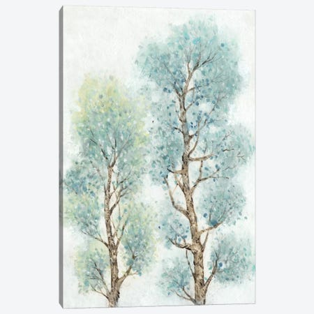 Tranquil Tree Tops II Canvas Print #TOT72} by Tim OToole Canvas Art