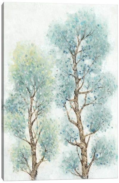 Tranquil Tree Tops II Canvas Print #TOT72
