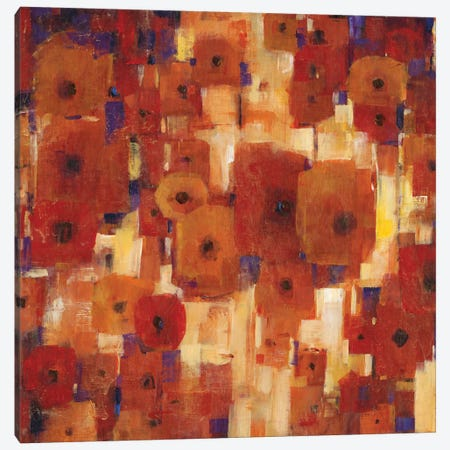 Transitional Poppies I Canvas Print #TOT73} by Tim OToole Canvas Art