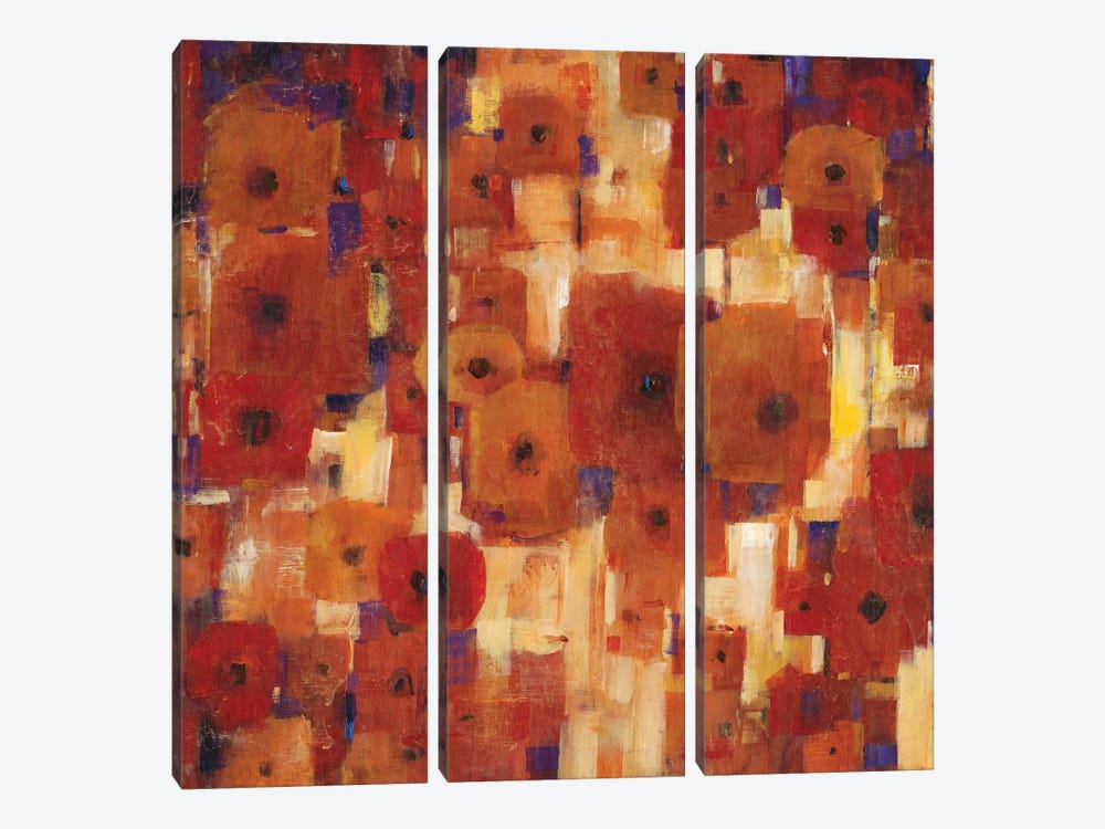 Transitional Poppies I by Tim OToole 3-piece Canvas Art Print