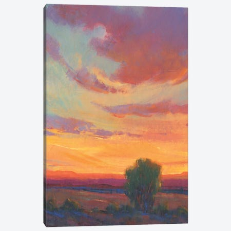 Fire in the Sky I Canvas Print #TOT743} by Tim OToole Canvas Wall Art