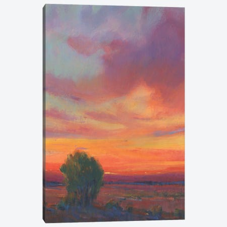 Fire in the Sky II Canvas Print #TOT744} by Tim OToole Canvas Print
