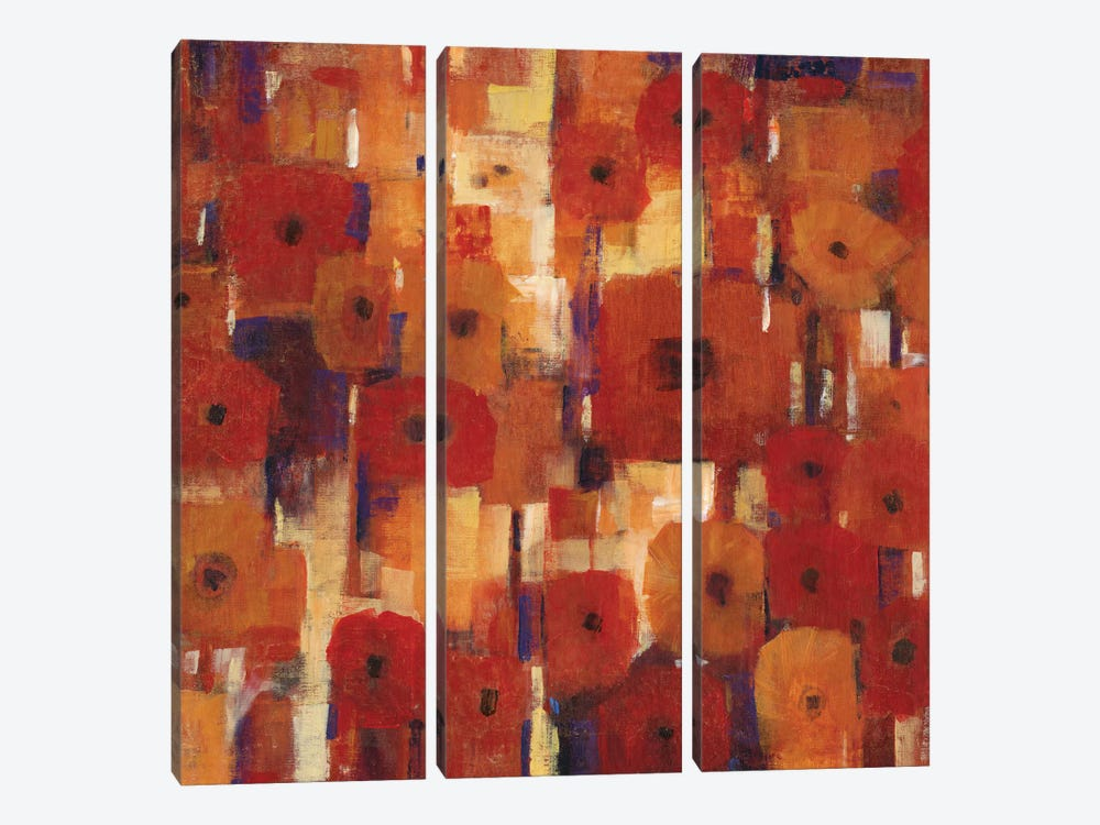 Transitional Poppies II by Tim O'Toole 3-piece Canvas Wall Art