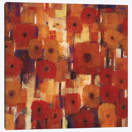 Transitional Poppies II Canvas Print #TOT74} by Tim OToole Art Print