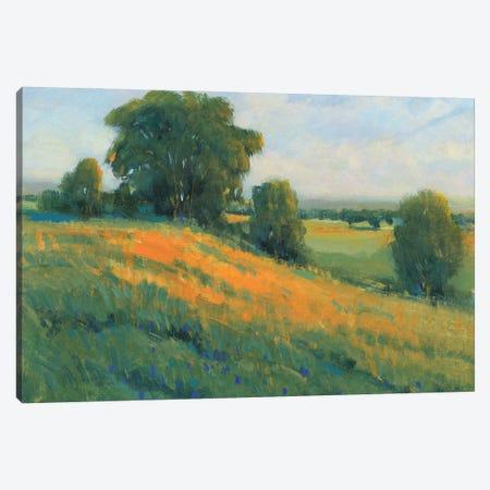Poppy Fields I Canvas Print #TOT757} by Tim OToole Canvas Artwork