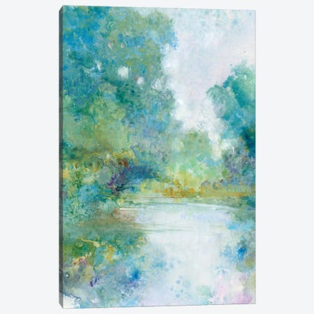 Tranquil Stream I Canvas Print #TOT768} by Tim OToole Canvas Art