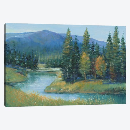 Trout Stream II Canvas Print #TOT770} by Tim OToole Art Print
