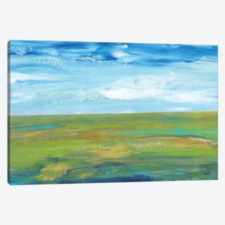 Vast Land I Canvas Print #TOT77} by Tim OToole Canvas Art Print