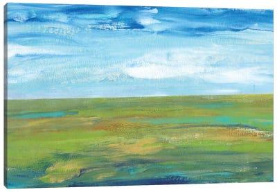 Vast Land I Canvas Print #TOT77