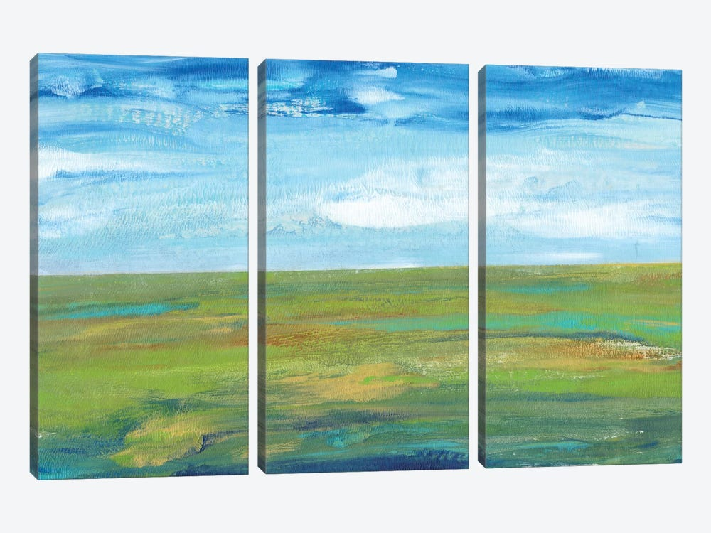 Vast Land I by Tim OToole 3-piece Art Print