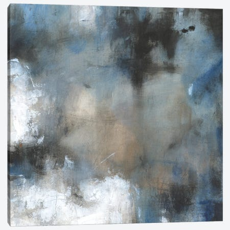 Embellished Shifting Motion I Canvas Print #TOT787} by Tim OToole Canvas Print