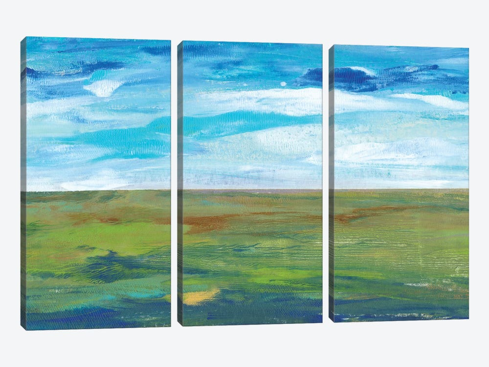 Vast Land II by Tim O'Toole 3-piece Canvas Artwork