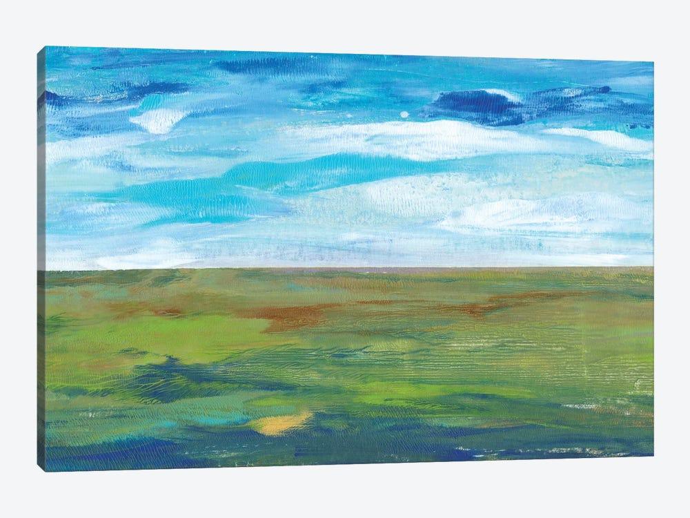 Vast Land II by Tim OToole 1-piece Canvas Art