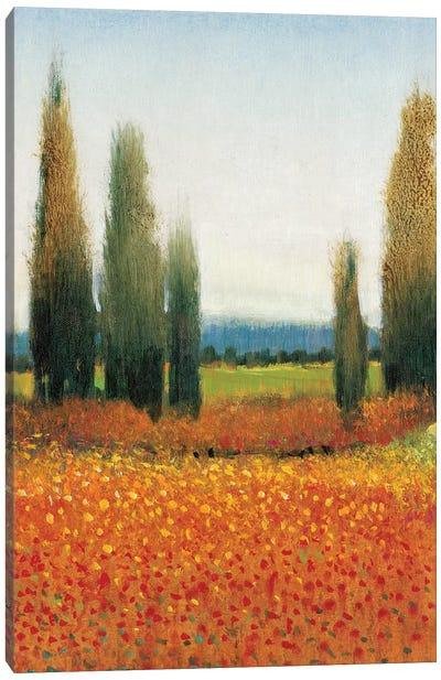 Cypress Trees II Canvas Print #TOT7