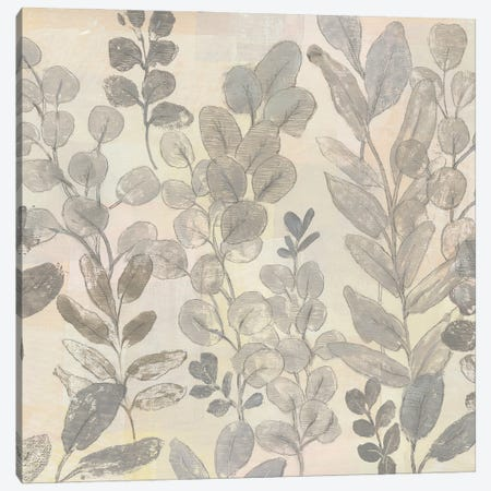 Leaf Pattern II Canvas Print #TOT800} by Tim OToole Canvas Art Print