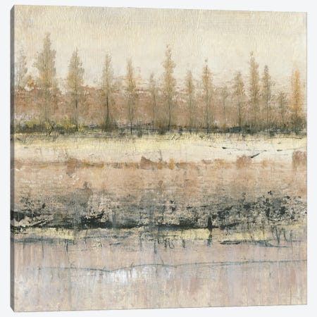 What Lies Beneath I Canvas Print #TOT809} by Tim OToole Canvas Art Print
