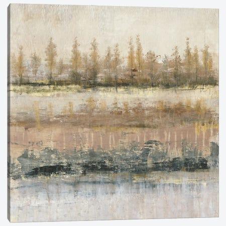What Lies Beneath II Canvas Print #TOT810} by Tim OToole Canvas Artwork
