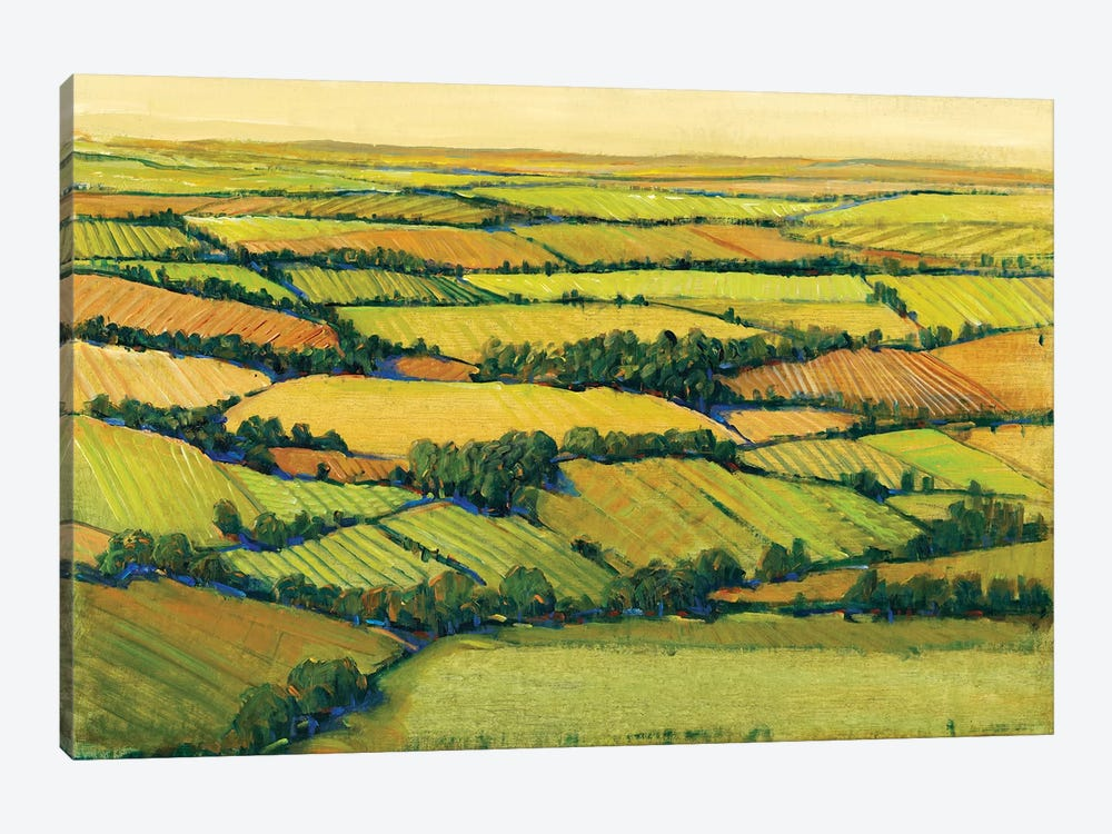 A View Above II by Tim OToole 1-piece Art Print
