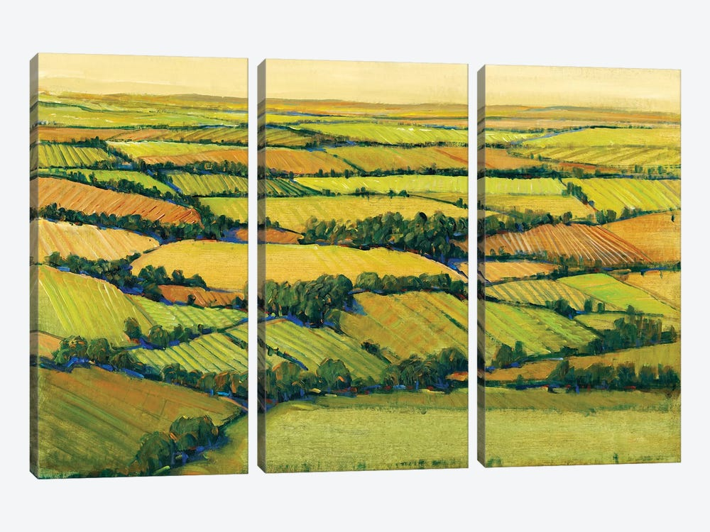 A View Above II by Tim OToole 3-piece Canvas Print
