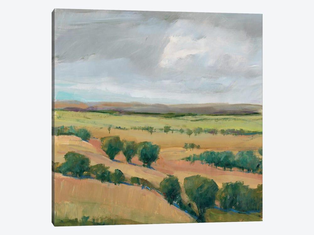 Brooding Storm I by Tim OToole 1-piece Canvas Art Print