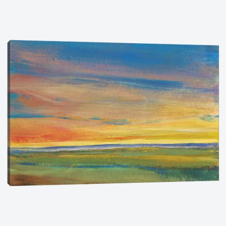 Fading Light I Canvas Print #TOT8} by Tim OToole Art Print