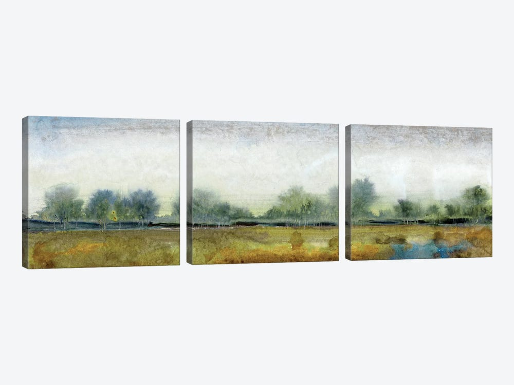 Ethereal Landscape I by Tim O'Toole 3-piece Canvas Wall Art