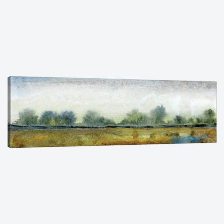 Ethereal Landscape I Canvas Print #TOT92} by Tim OToole Canvas Artwork