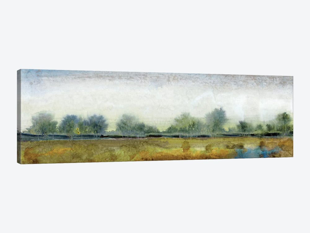 Ethereal Landscape I by Tim OToole 1-piece Canvas Artwork
