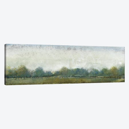 Ethereal Landscape II Canvas Print #TOT93} by Tim OToole Canvas Art