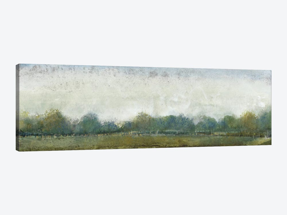 Ethereal Landscape II by Tim OToole 1-piece Canvas Art Print